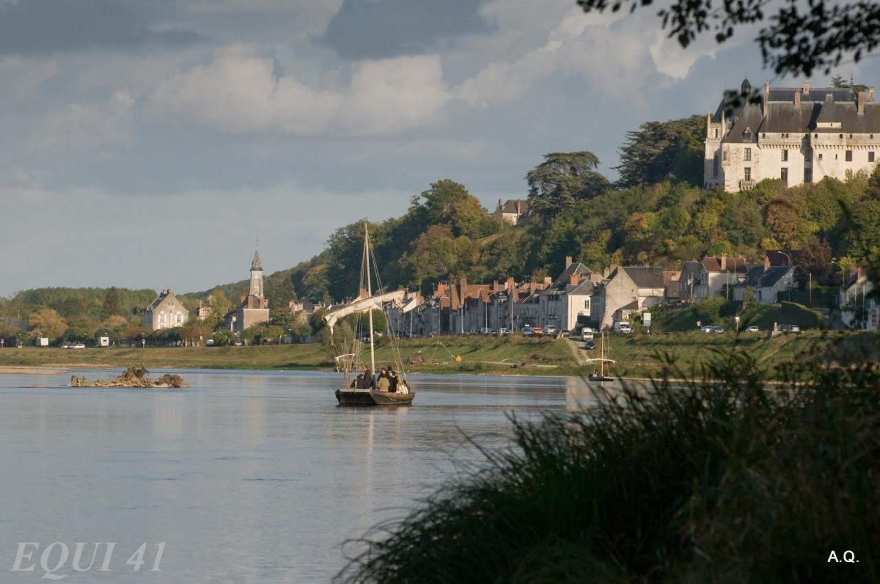 Gabare au pied du chateau de Chaumont sur Loire