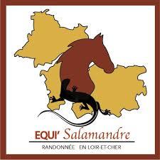 Equisalamandre 2017! On remet ça!