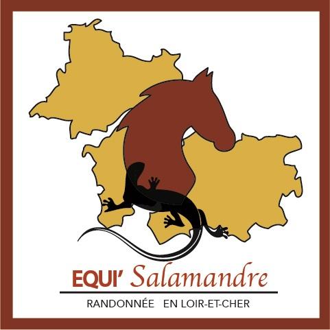 Logo fin equisalamandre